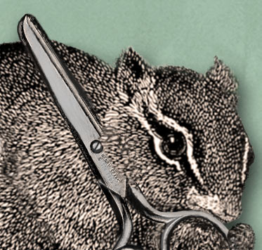 Chipmunk with scissors