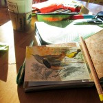 Sketchbooks and Playthings